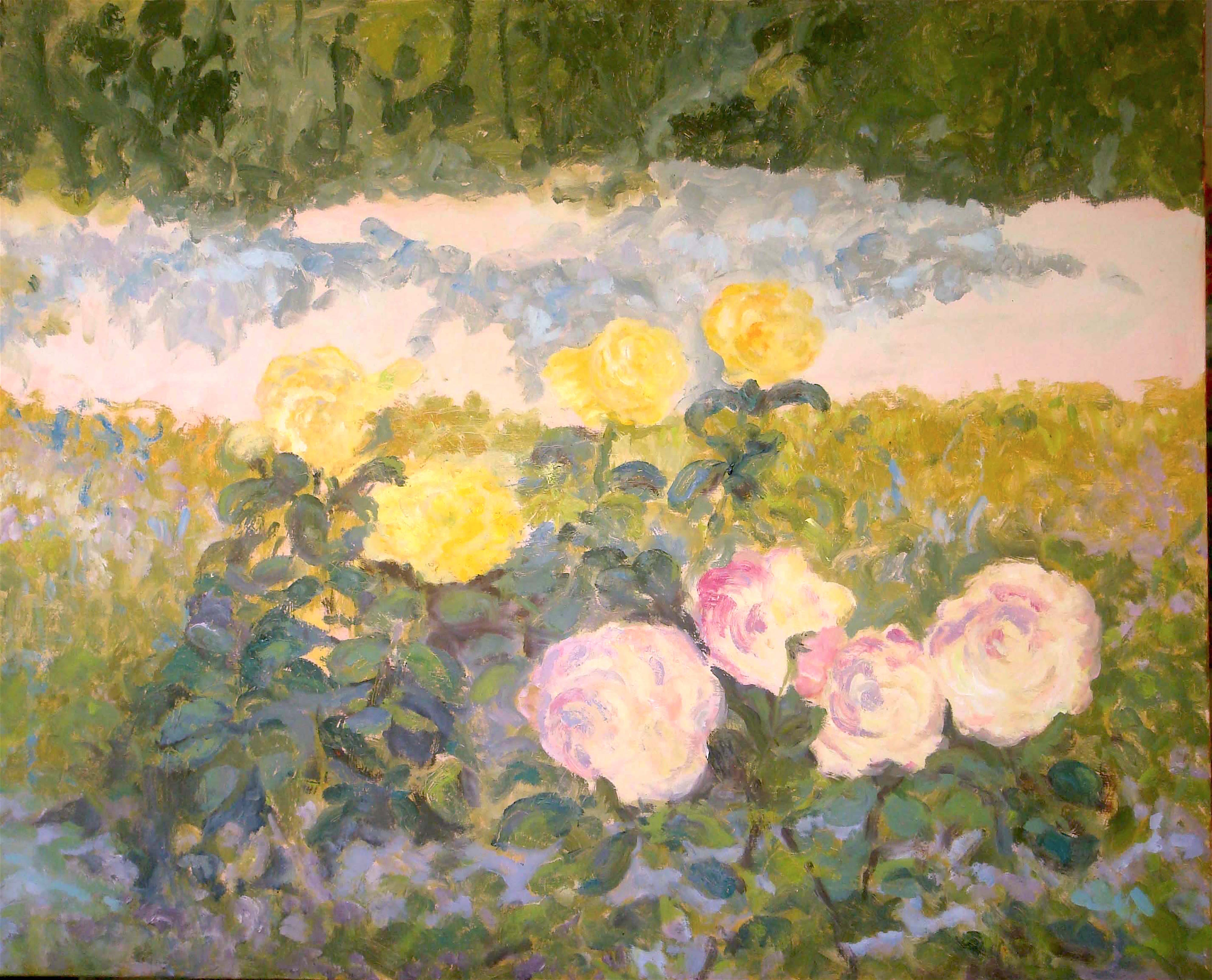 Image of - Early Morning Yellow Roses