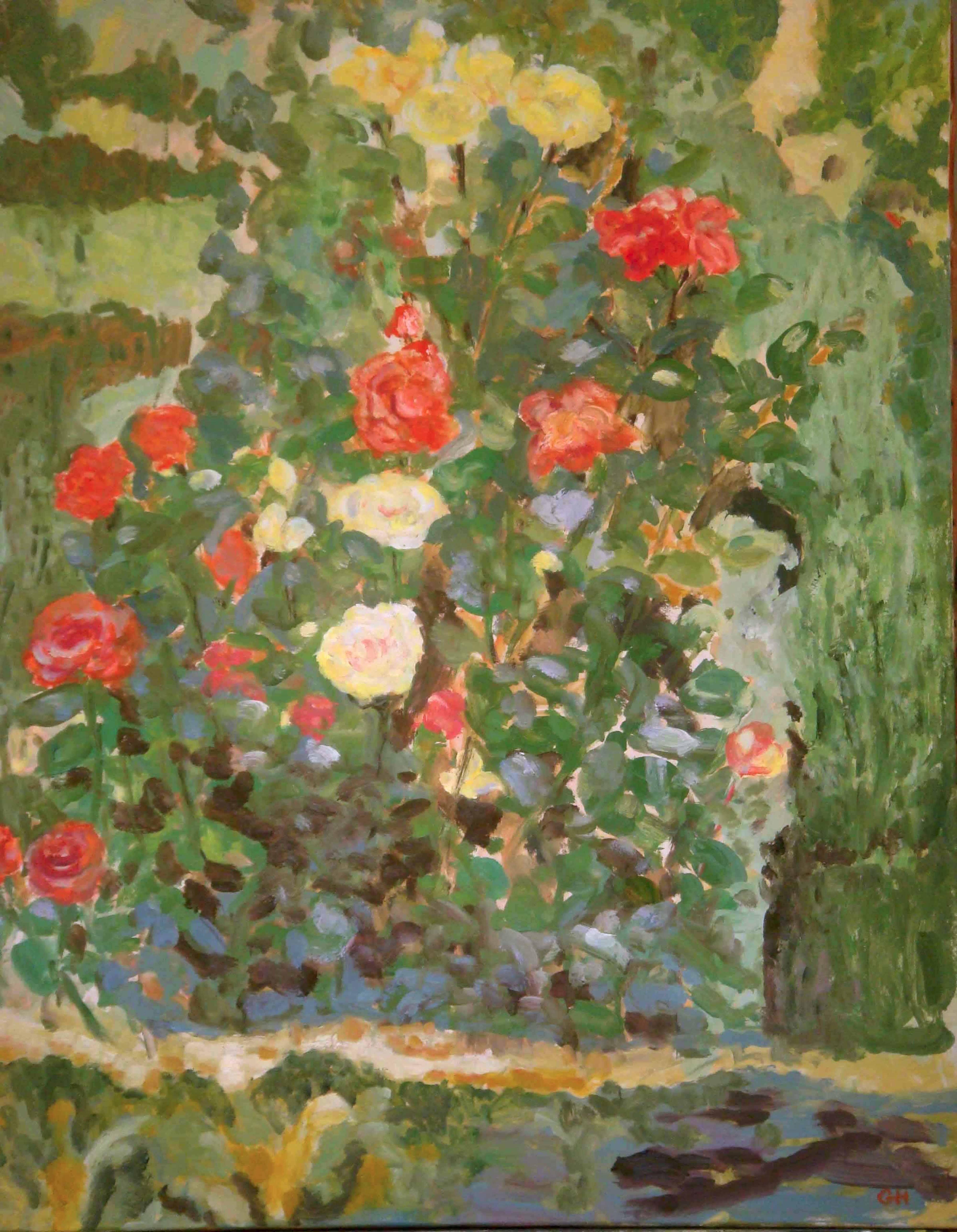 Image of - Super Star Roses