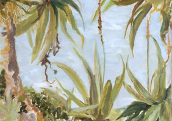 Image of - Aloes and the city of Menton