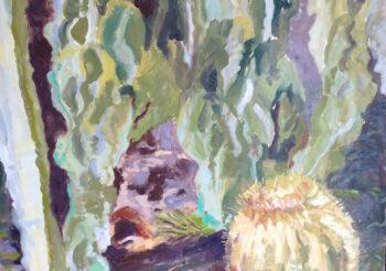 Image of - Barrel Cactus