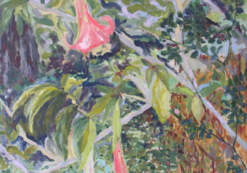 Image of - Brugmansia, Rose, Scilla