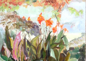 Image of - Canna Lilies in Autumn