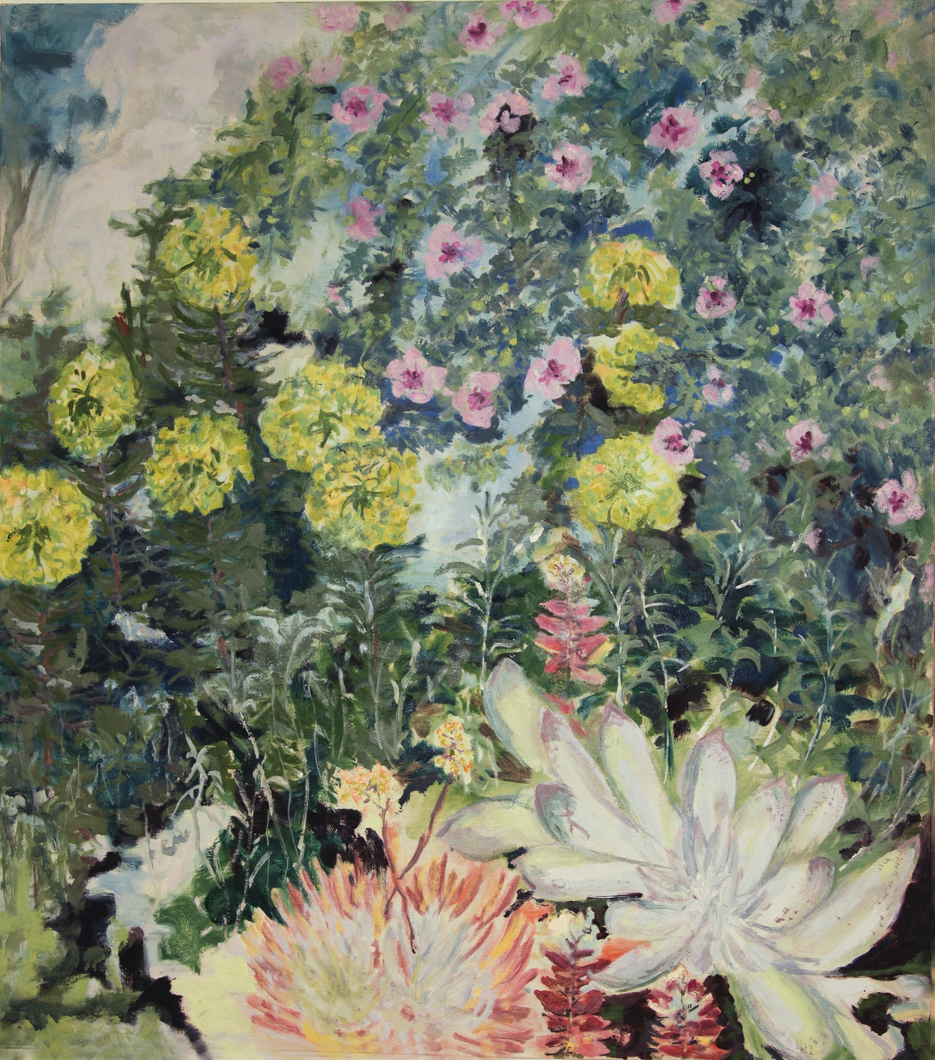 Image of - Dudleya, Mallow & Salvia