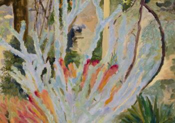Image of - Wooly Bush & Bromeliad