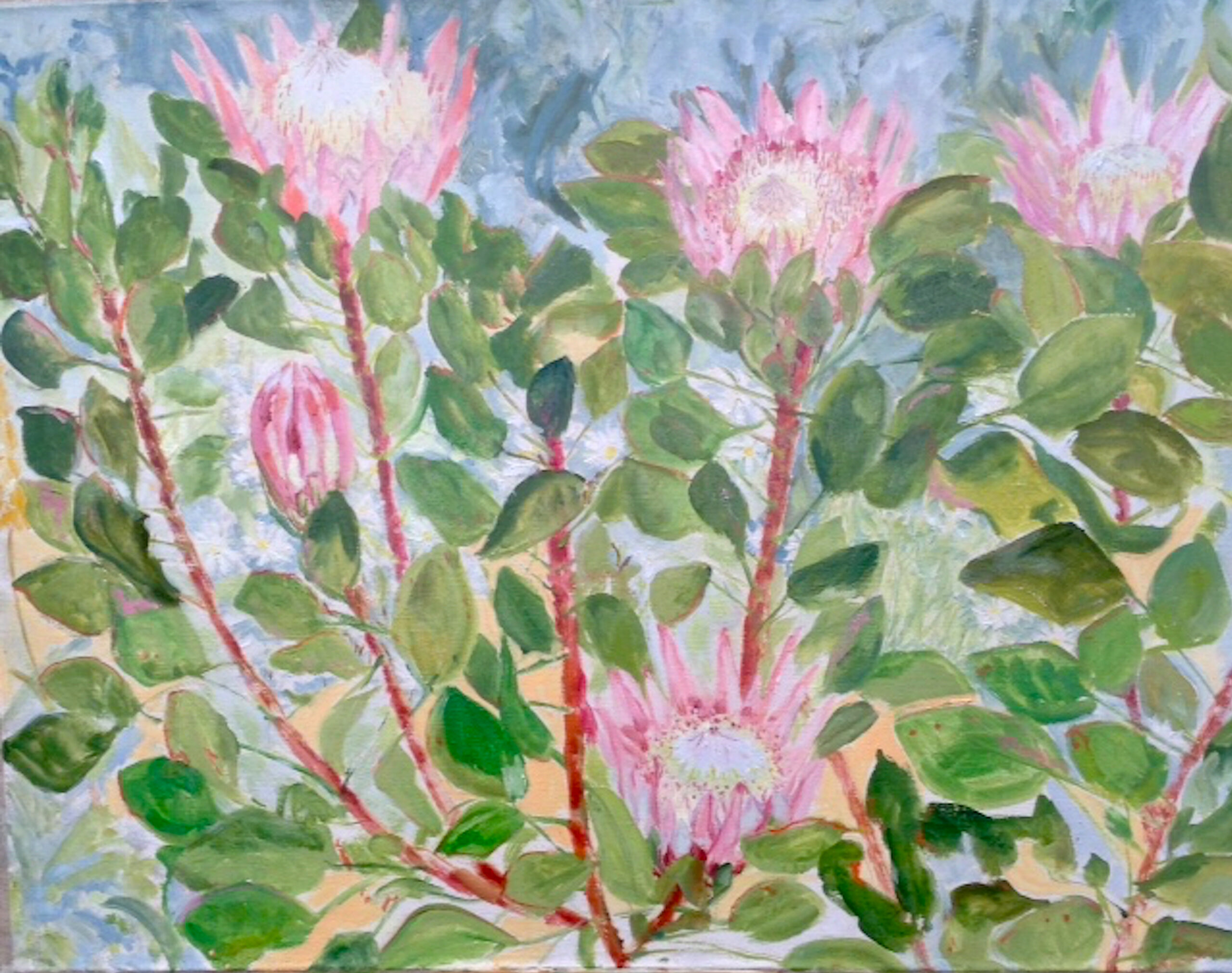 Image of - King Protea and Marguerite