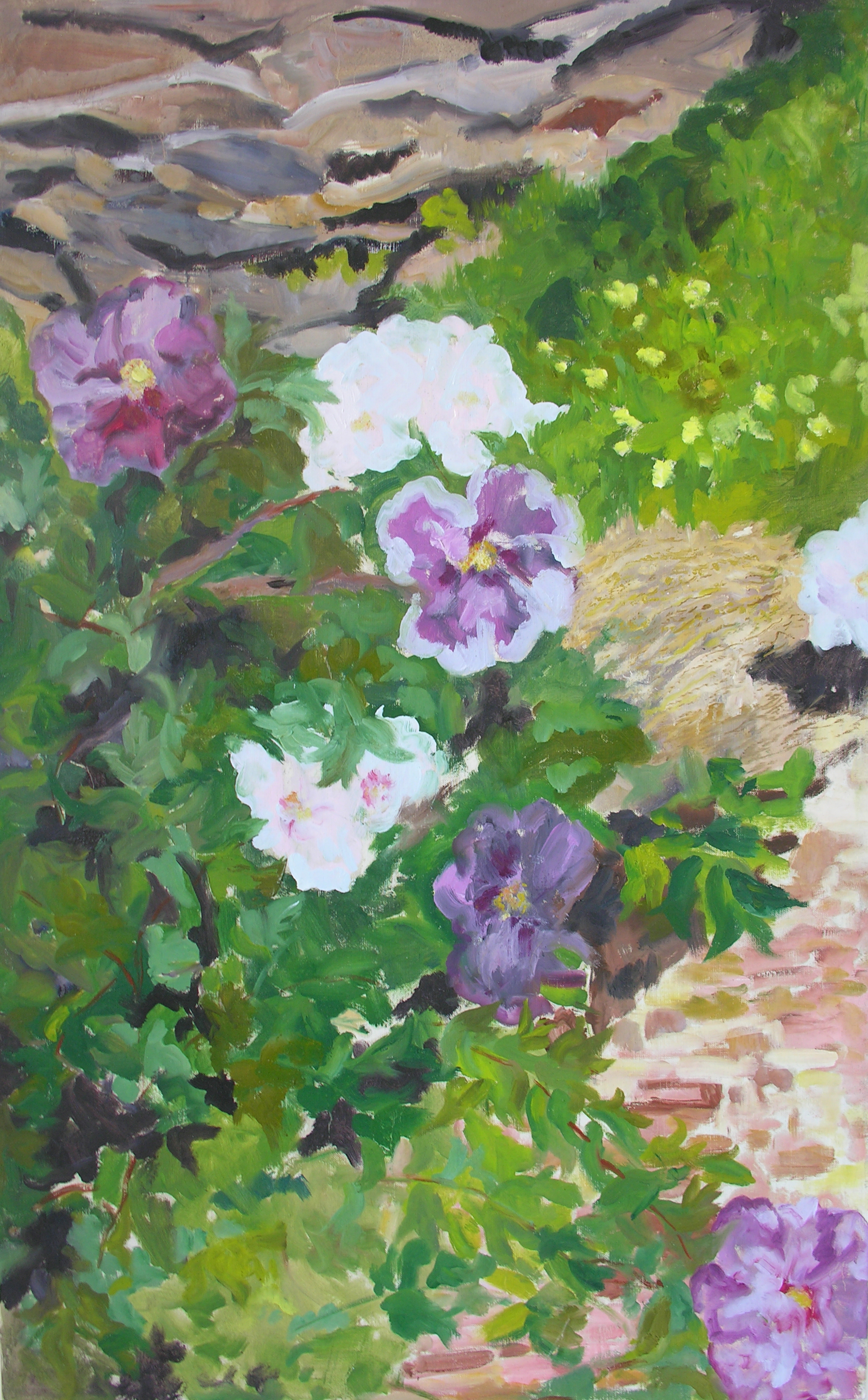 Image of - Palm, Peonies and Pathway