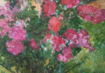 Image of - Pompom Roses with Window