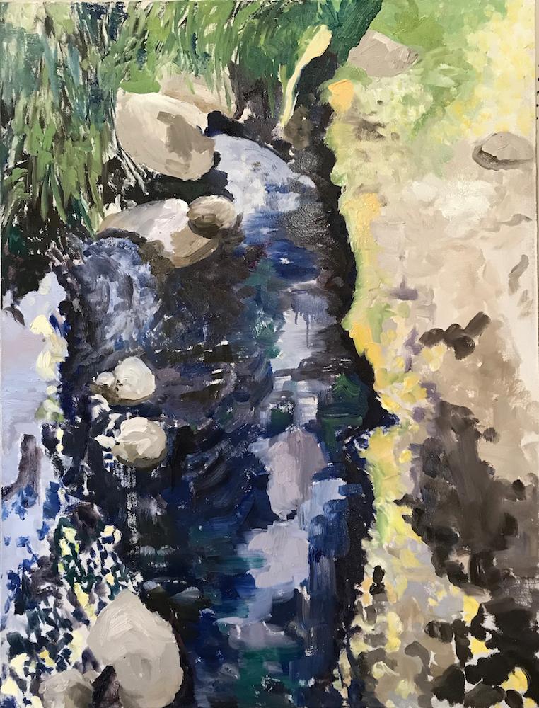 Image of - Fullerton Arboretum Stream