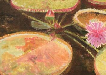 Image of - Victoria Amazon Lily II